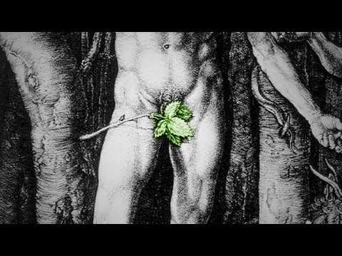 Vagina fecal matter