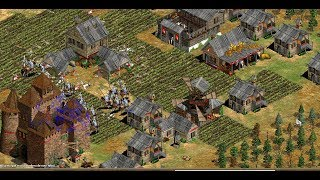 THE VIPER-LIEREYY VS DAUT-HERA BO7 DUPLA NUNCA ANTES VISTA AGE OF EMPIRES 2