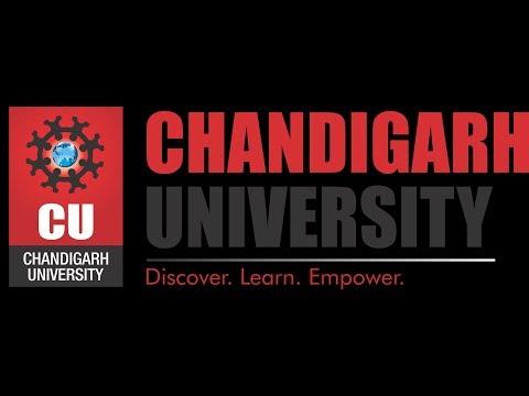 Bollywood Night Live At Chandigarh University!