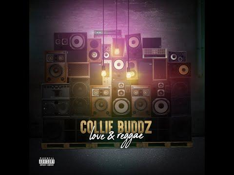 Collie Buddz - Love & Reggae (Official Music Video Trailer)