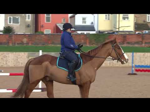 British Showjumping - Training for those returning to affiliated showjumping  Part 6