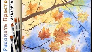 «Осенние листья» как нарисовать АКВАРЕЛЬ Сезон 3-5 Мастер-класс для начинающих ДЕМО