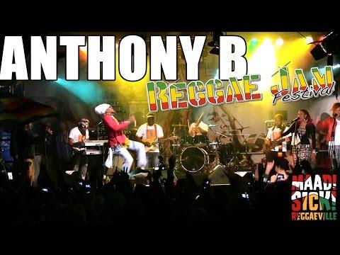 Anthony B - Higher Meditation @Reggae Jam 2015