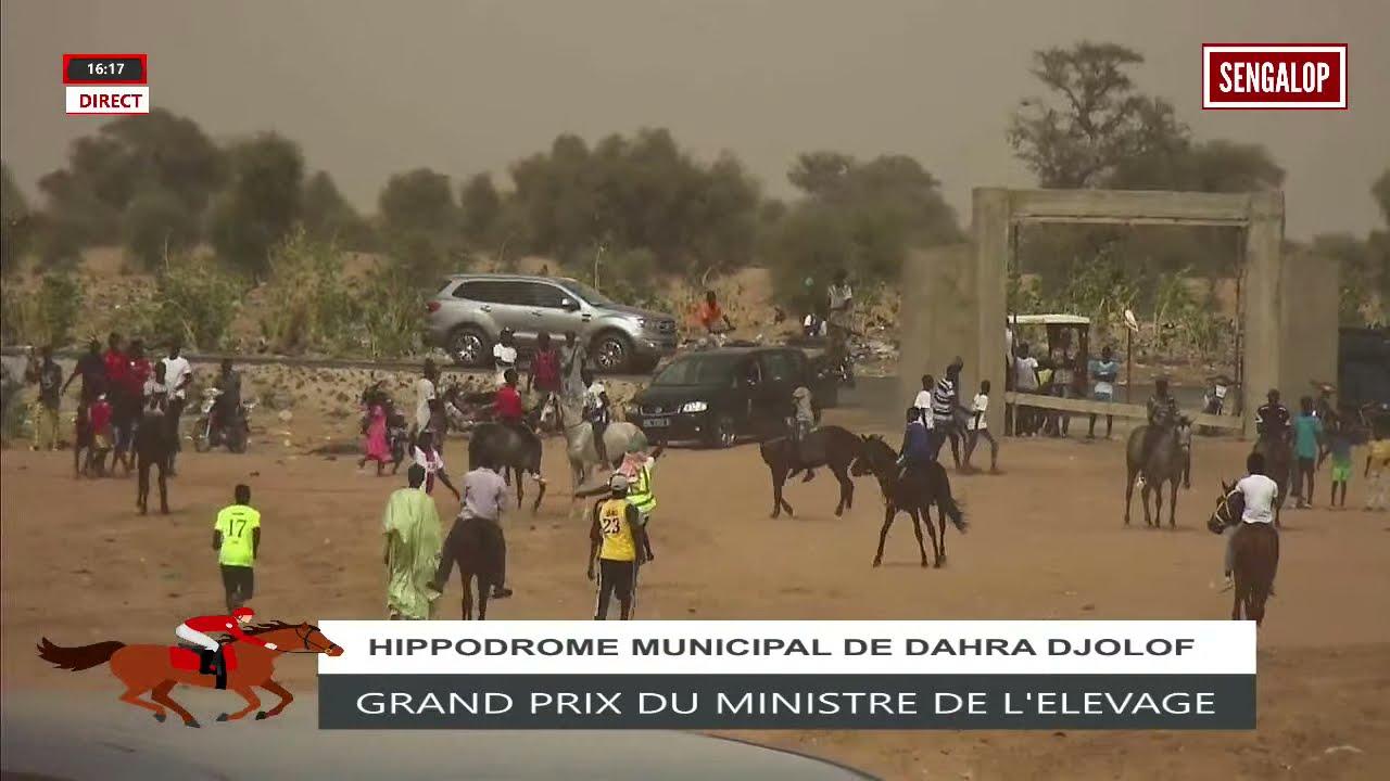 Download COURSE HIPPIQUE : GRAND PRIX DU MINISTRE DE L'ELEVAGE ET DES PRODUCTIONS ANIMALES A DAHRA
