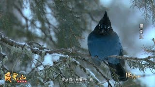 《錦繡中國》黑龍江·柴河(2) 0104 | Fantastic China, Chai River, Heilongjiang Province Ep. 23 HD