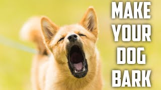 It will make your dog bark..guaranteed