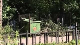"""Первое кладбище в Череповце содержится на """"тройку"""""""