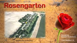 Uckermark - Hetzdorf - Internet Rosengarten