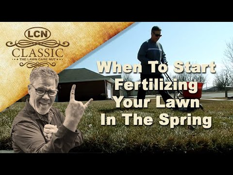 When To Start Fertilizing Your Lawn In Spring