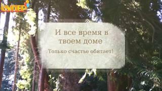 Красивое поздравление свекру  в стихах. super-pozdravlenie.ru