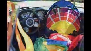 White Bird & Rainbow Rider Kites 2