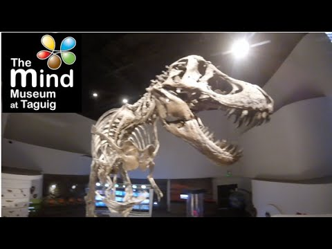 "The Mind Museum with kids | BCG, Taguig, Philippines | GoPro | Marbert Rocel ""Tttictictac"""