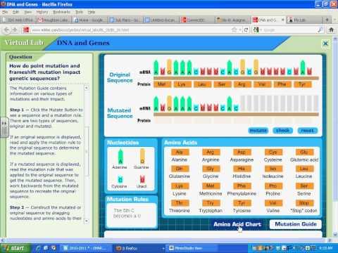 Bio Mutations Virtual Lab.avi