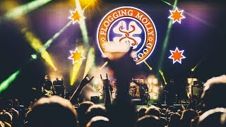 Flogging Molly - Life Is Good (Official Fan Video)
