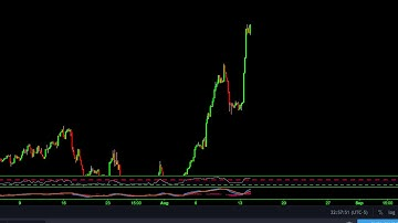 BTC Whale on Bitfinex