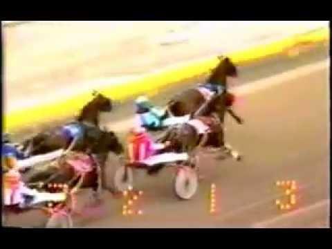 1987 Monticello Raceway SAUNDERS CHOICE David Glasser