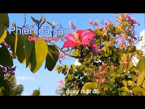 Karaoke Phiến Đá Sầu ( DonHo - Dieu Huong)