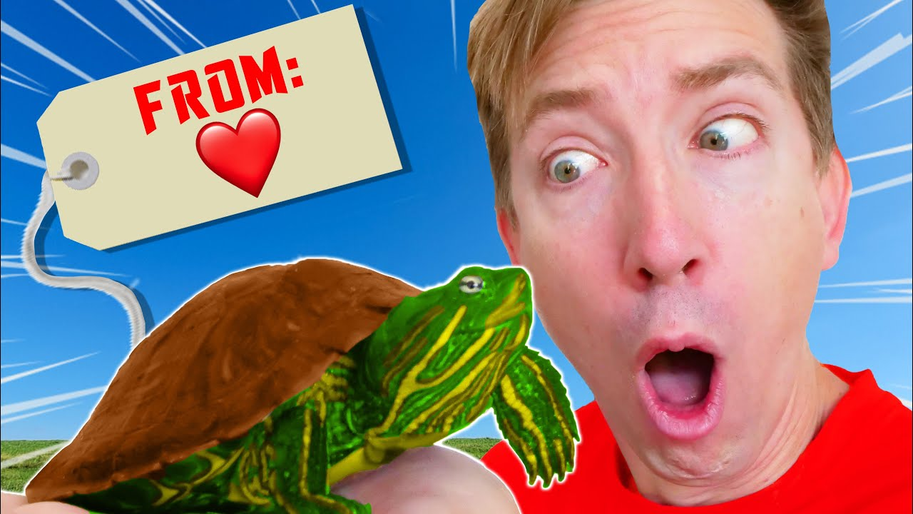 WHO SENT ME THIS TURTLE? I Have a Weird Secret Admirer