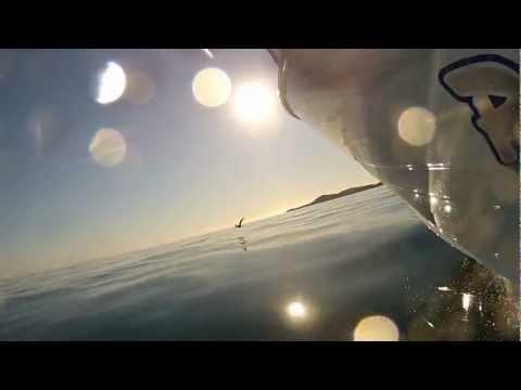 Moreton Bay morning magic