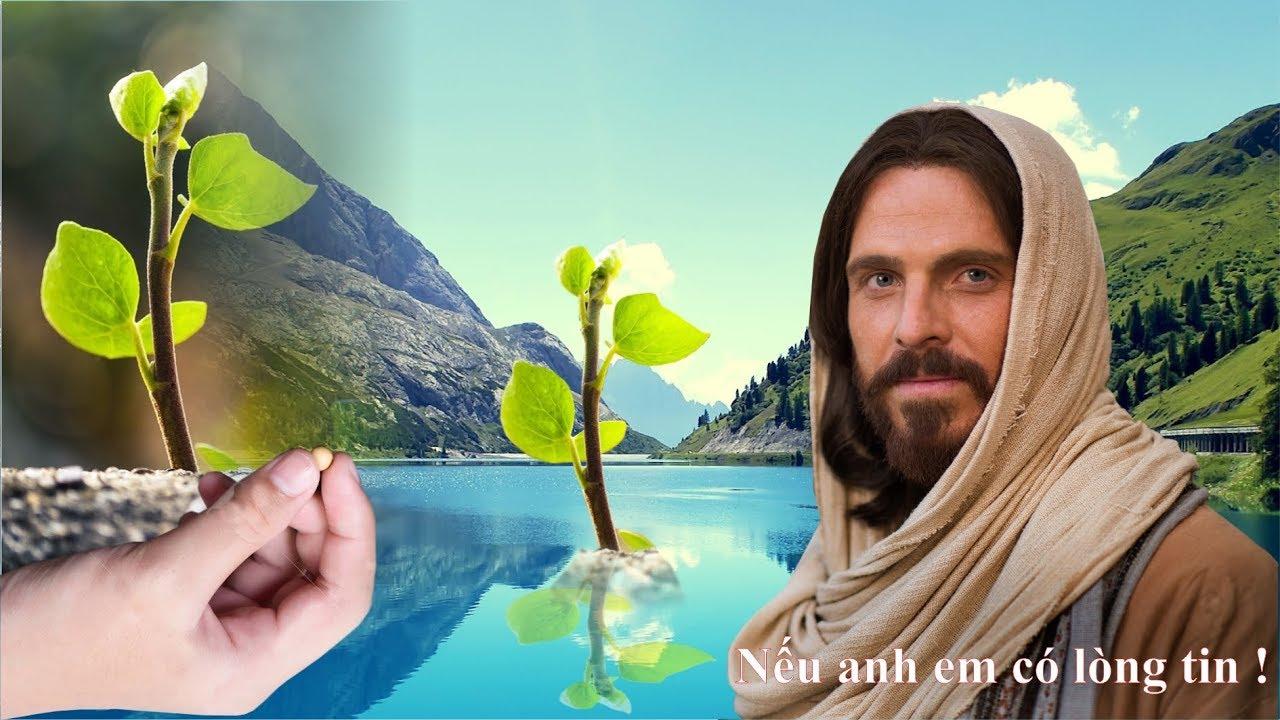 Tin Mừng Chúa Nhật 27 Thường Niên - Năm C ( Lc 17, 5 - 10)