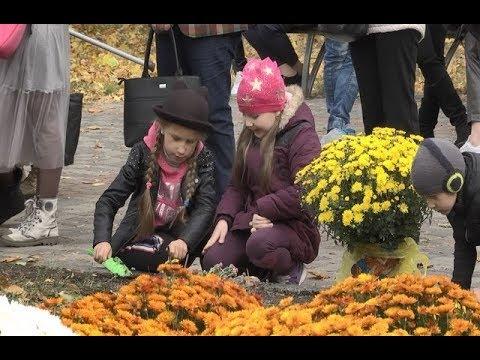 mistotvpoltava: Парк «Перемога» – фестиваль хризантем