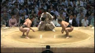 ちくしょおお sumo aminishiki hakuho.