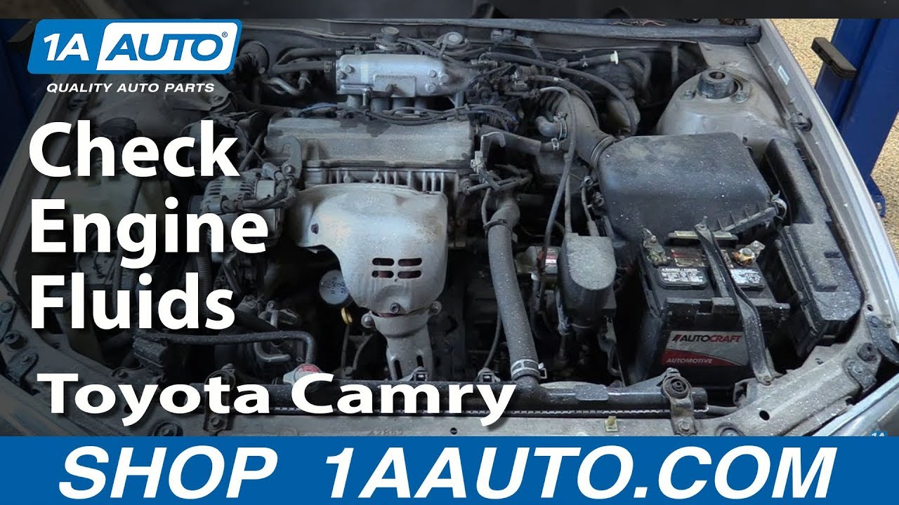 How To Check Your Fluids On A 98 03 Toyota Camry Youtube
