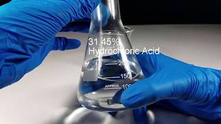Stomach Acid (Hydrochloric Acid) VS Penny