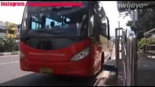 "Download Video Bus Transmusi (Busway) Telolet - ""Om Telolet Om"" Transmusi Palembang MP3 3GP MP4"