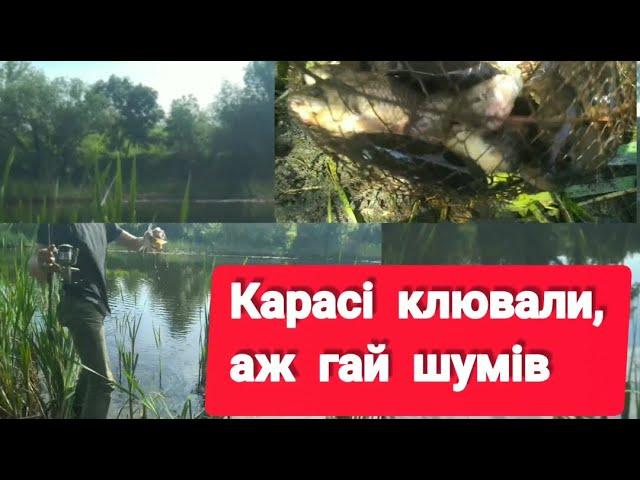 Рибалка на карася в травні на річці Синюха село Тернівка