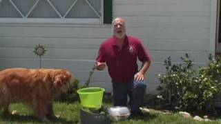 01 если собака чрезмерно лает.avi(, 2010-05-17T21:02:28.000Z)