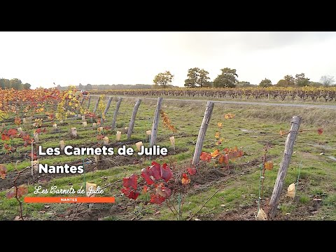 Nantes - Les