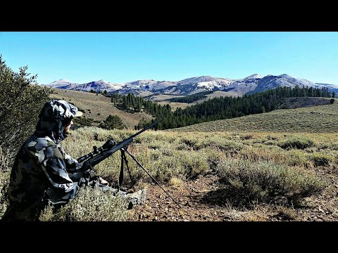 The Worst Thing That Could Happen... California Public Land Deer Hunt | Mule Deer Hunting Vlog