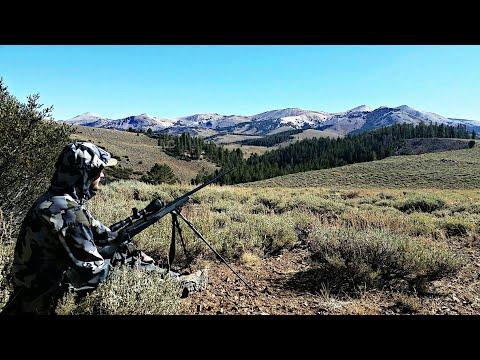 The Worst Thing That Could Happen... California Public Land Deer Hunt | Mule Deer Hunting Vlog