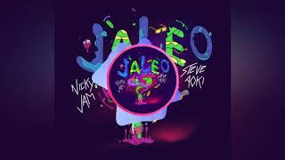 Jaleo Remix - Nicky Jam X Steve Aoki remixes primi