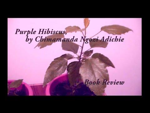 Book Review Purple Hibiscus By Chimamanda Ngozi Adichie