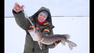 Рыбалка на озере Чалкантур Shorts