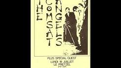 The Comsat Angels-Zinger (Live 7-19-1982)