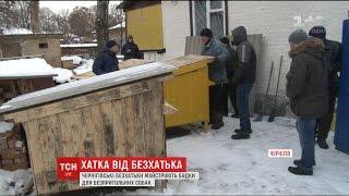 Чернігівські безхатченки майструють будки для безпритульних собак