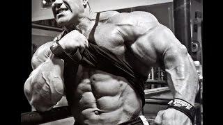 Эндоморф. Питание.Программа тренировок для толстяков