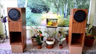 Рупорная акустика на 10ГДШ-1-4 #2