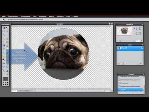 Как обрезать фото по кругу в фотошоп онлайн - YouTube