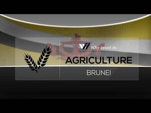 Agriculture  Brunei - Why invest in 2015