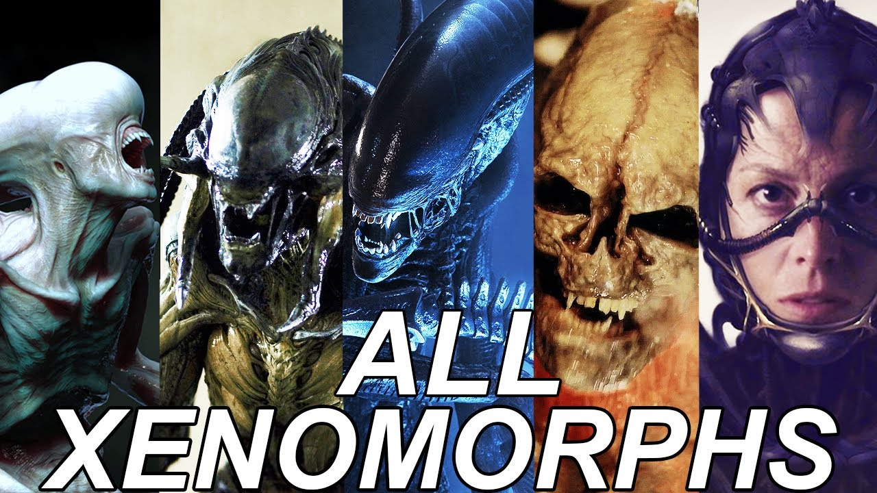 Download ALL Xenomorphs Explained