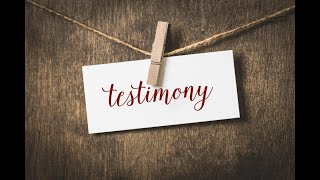 The Hebrew Awakening: Testimony 14