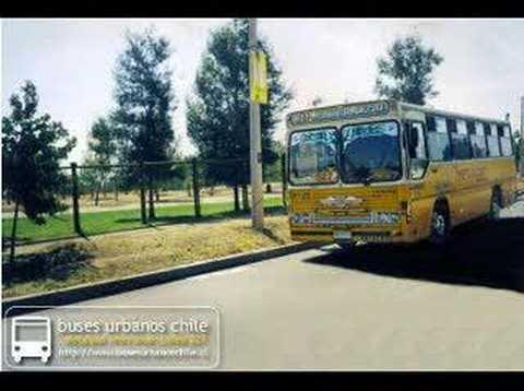 Buses Presentacion buses amarillos