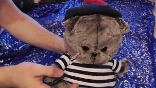 Кот Басик моряк в берете