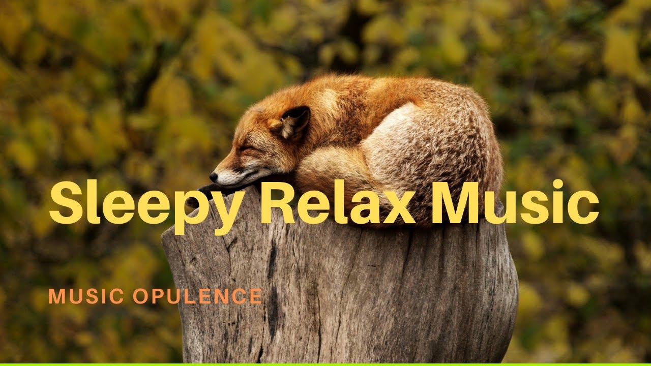 Sleepy Relax Music