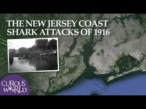 The New Jersey Shark Attacks of 1916