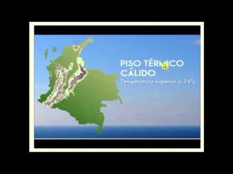 Los pisos termicos and youtube for Pisos el encinar de los reyes